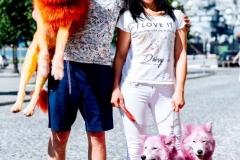 Розовые собаки 2